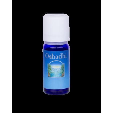 Oshadhi Levandule vysokohorská esenc.olej 5ml